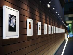 Exposition photographique au Conseil de l'Europe