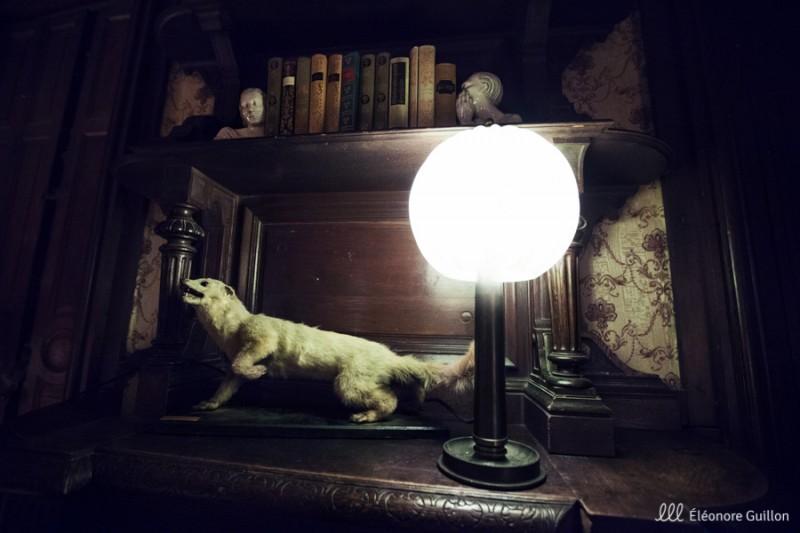 L'esprit du Loup, de Katia Scarton-Kim