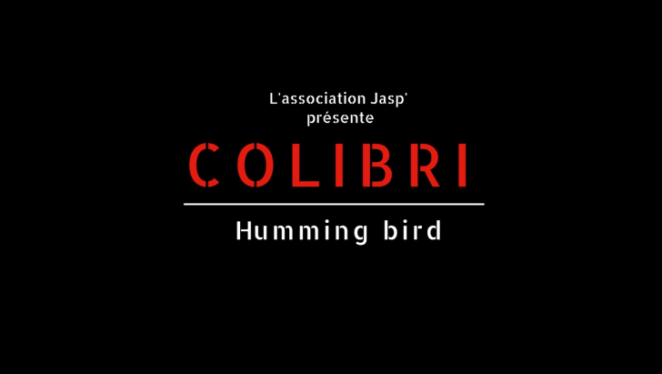 colibri-humming-bird-abdoulaye-konate-eleonore-guillon0